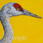 Click on Sandhill Crane to view Teresa Stieben BFA paintings