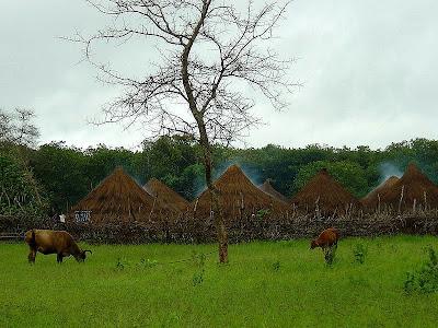 A Guinea-Bissau village