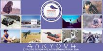 Σύλλογος προστασίας και περίθαλψης αγρίων ζώων Αλκυόνη