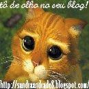 http://2.bp.blogspot.com/_vzrlnu76oJw/Sg60KZXg7hI/AAAAAAAABMo/d4ESH--_kg8/s320/gatosandra.jpeg