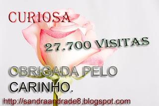http://2.bp.blogspot.com/_vzrlnu76oJw/Sv_1QBtQV-I/AAAAAAAACZE/_ywj1nfGSYc/s320/rosarosa.copia