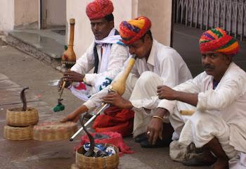 Snake Charmers in Delhi