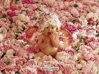 Seguidores,visitantes: Recebam essas lindas flores e o meu muito obrigada.