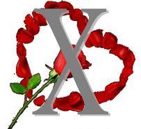 Valentine Day dan Umat Islam