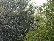 Pensavo che un giorno di pioggia era quello che mi ci voleva.