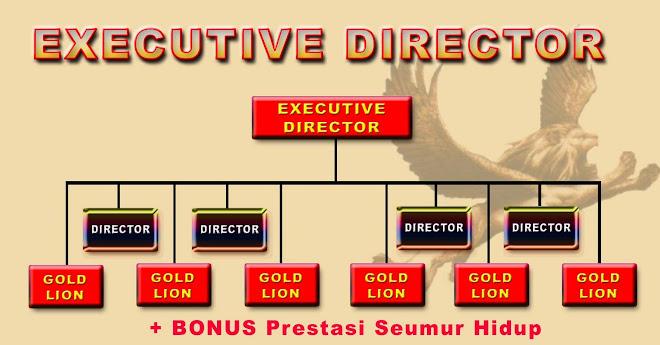 executive directore