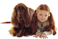 red haired girl and irish setter