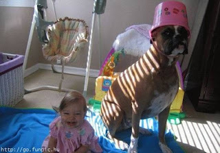 cute dog and baby picture image photo