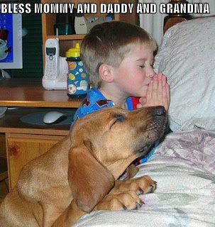cute dog picture of boy and dog praying image photo picture