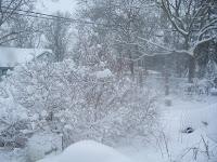 snowstorm 12-20-09