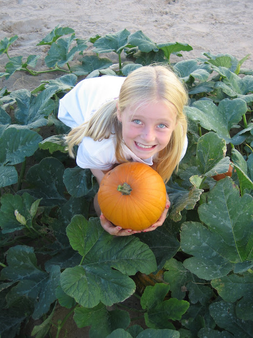 Harvest Day!