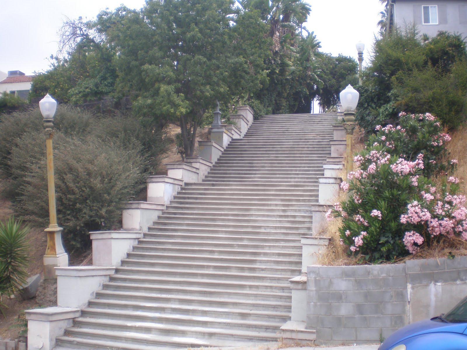 Climbing LA