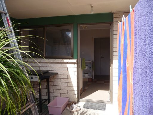 Un poco más de la casa (casucha) de Tauranga