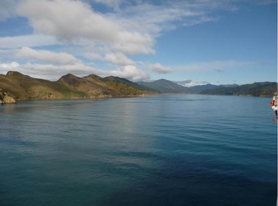Los paisajes rumbo a Picton