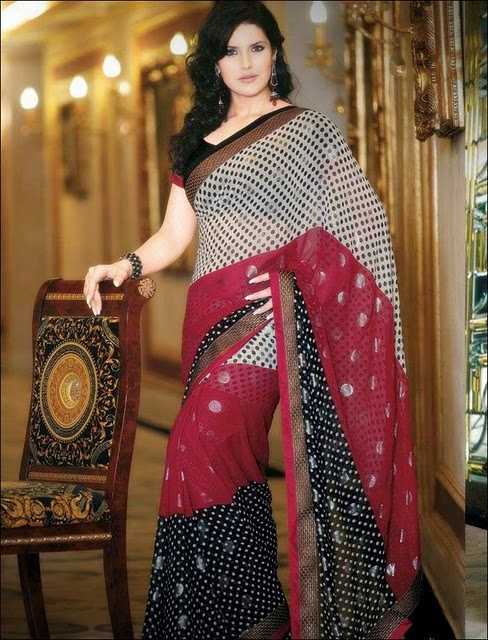 , Zarine Khan In Saree - Hot Pics