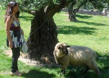 Myrene & her little lamb