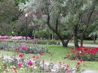 Botanical Gardens Hunter