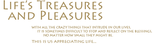 Life's Treasures and Pleasures