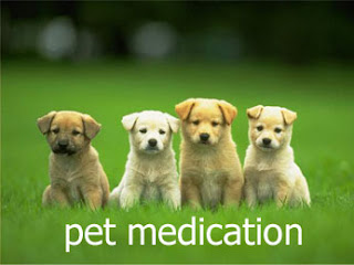 What is the best/cheapest online site to buy pet meds?