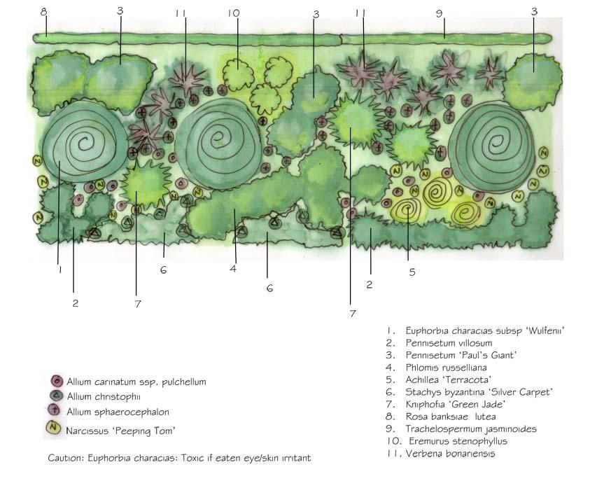 Bulb Garden Design images