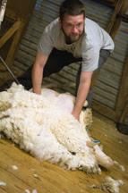 Jonathan shearing