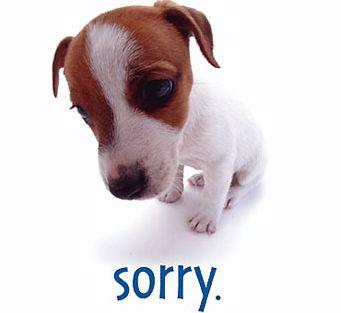 [apologizing]