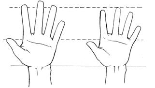 Worksheet. Consejos Trucos y ms Como dibujar manos anime