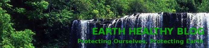 EARTH HEALTHY BLOG
