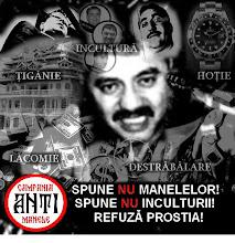 Opriti Tiganizarea Romaniei!!!