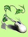 Herbario Virtual de la Costa del Sol