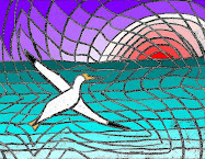 Gannet Way Out Over The Sea - a gift from Stushie