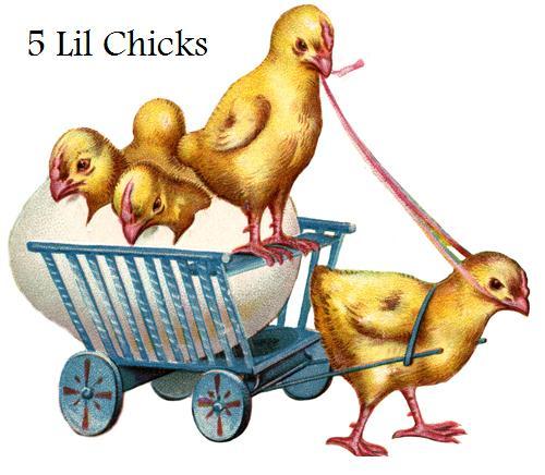 5 Lil Chicks