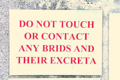 Sign found in Hong Kong reading 'DO NOT TOUCH OR CONTACT ANY BRIDS OR THEIR EXCRETA'