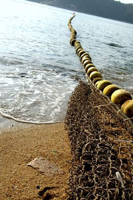 Image of a shark net, a fabric chain, off of Stanley Beach in Hong Kong.