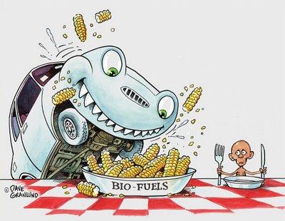 http://2.bp.blogspot.com/_wDzTfNbQdVU/TUMNIuYOcBI/AAAAAAAAEC0/UO5dmnWA3Cw/s1600/bio-fuels.jpg