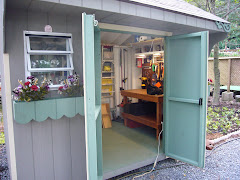 My new workshop in the shed