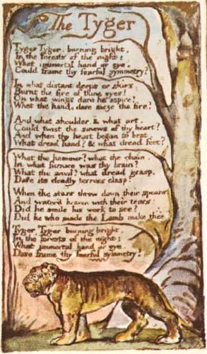 an analysis of the lamb and the tiger by william blake Blake's tiger, moreover, is burning bright robert c literary contexts in poetry: william blake's 'the tyger' does it suggest that tiger and lamb.