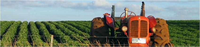 La Educación Agrícola