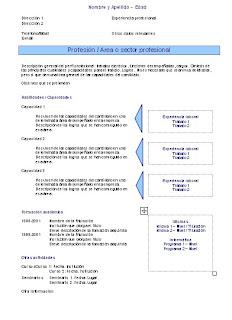 curriculum vitae funcional