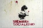 Siembra progresismo, siembra..., SOCIALISMO