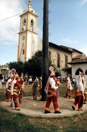 VOLADORES DE NAUZONTLA.