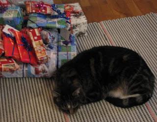 Simba ja lahjapaketit jouluaattona