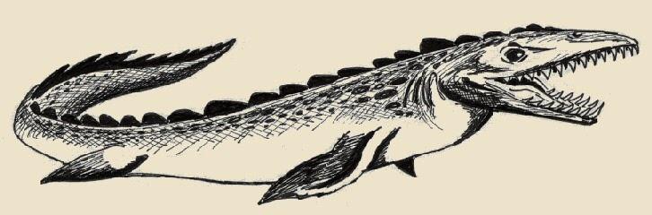 Dinosauri tilosauro for Disegni marini da colorare