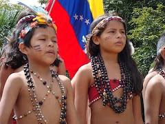 Para detener la siembra de tanta muerte defendamos nuestros aborigen