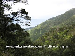 Kusugawa Trail, Yakushima