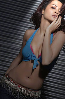 <br />Surveen Chawla Sexy Wallpaper