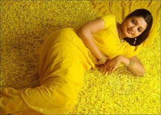 <br />Vandhana Menon Hot Yellow Saree