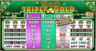 Triple Triple Gold Slot Machine Pay Table