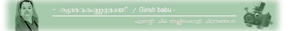 ക്യാമറക്കണ്ണുമായ് / Girish babu