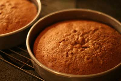 chocolate cakes cooling